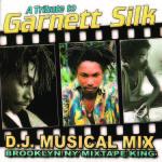 Garnet Silk Ft