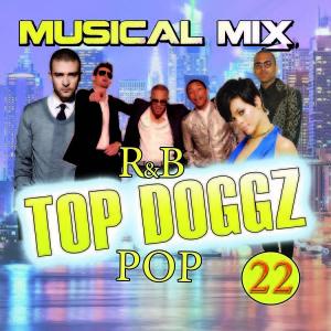 Top Doggz 22 Ft